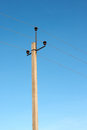 Electricity post on the sky tall blue Stock Photography