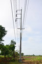 Electricity post or utility pole the standard in the united states is about ft m long and is buried about ft m in the ground Royalty Free Stock Photo