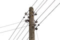 Electricity post with wire lines power electric distribution isolited Royalty Free Stock Photo