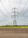 An Electricity Pylon in an English Rural Landscape Royalty Free Stock Photo