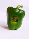 Electronic bell peppers Stock Image