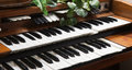 Electronic piano keyboards close up Royalty Free Stock Photo