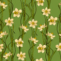 Elegance Seamless pattern with flowers daffodils, vector floral illustration in vintage style. Green background