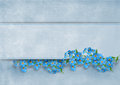 Elegance vintage background with forget me not flo flowers and banner copy space Stock Photos