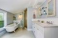 Elegant bathroom in pastel blue tones with white bath tub in the corner. Royalty Free Stock Photo