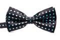 Elegant Black Bow Tie In Blue ...