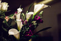 Elegant bouquet of white Calla lilies and purple Eustoma flowers. Royalty Free Stock Photo