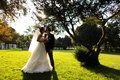 Elegant bride and groom posing together outdoors on a wedding day lovely classic green park Stock Photography