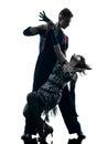 Elegant couple dancers dancing silhouette Royalty Free Stock Photo