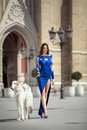 Elegant girl in blue evening dress standing outdoor with dog Royalty Free Stock Photo