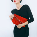 Elegant glamor lady with clutches Royalty Free Stock Photo