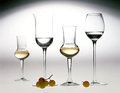 Elegant glasses of grappa Stock Image