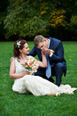 Elegant groom kisses hand of his beautiful bride Stock Image