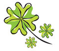 Elegant hand drawn four leaf clover symbol of luck Royalty Free Stock Image