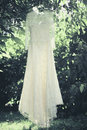 Elegant lace wedding dress hanging on a tree Stock Images
