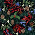 Elegant seamless pattern with winter seasonal plants, coniferous tree branches and cones, berries and leaves on black