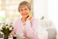 Elegant senior woman Stock Photos
