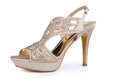 Elegant stiletto shoe female with rhinestones Royalty Free Stock Image