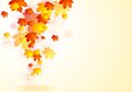 Elegant vector autumn background abstract with falling leaves eps design Stock Photos