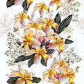 Elegant vector pattern with yellow mango flowers  in vintage sty Royalty Free Stock Photo