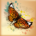 Elegant vintage design with orange butterfly and ink splats background butterflies on old paper Royalty Free Stock Photography