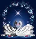 Elegant white and black swan on blue background bubbles frame Stock Photo