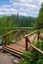 Elegant wooden bridge Stock Photos