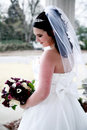 Elegant Young Bride Royalty Free Stock Photo