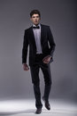 Elegant young model wearing suit muscular Royalty Free Stock Photos