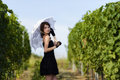 Elegant young woman outdoor portrait lean on wall covered in vin vines Royalty Free Stock Photo