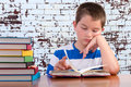 Elementary schoolboy focusing on his studies Royalty Free Stock Photo