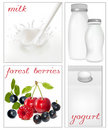 Elements for design of packing milk dairy. Milky s Stock Images