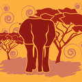 Fighting African elephants in the savannah. African savanna elephant African bush elephant, Loxodonta africana