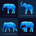 Elephant - Blue low poly vector set Design Royalty Free Stock Photo