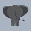 Elephant Bottom