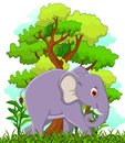Elephant cartoon with forest background illustration of Royalty Free Stock Photography