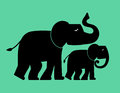 Elephant family baby with parent mother or father Royalty Free Stock Images