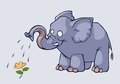 Elephant and flower illustration of a kind watering a Royalty Free Stock Photo
