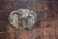 Elephant head stucco. Royalty Free Stock Photo