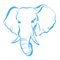 Elephant head on a white background Stock Photography