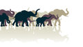 Elephant herd editable vector illustration of an with reflections Royalty Free Stock Image
