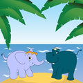 Elephant and hippopotamus Stock Image