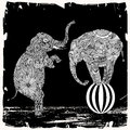 Elephant illustration two elephants with floral decoration on black background with white frame Royalty Free Stock Images