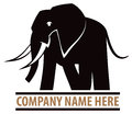 Elephant logo a icon of an Stock Image