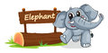 Elephant and name plate illustration of on a white Stock Image