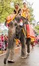 Elephant parade Royalty Free Stock Photo