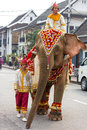 Elephant procession for Lao New Year 2014 in Luang Prabang, Laos Royalty Free Stock Photo