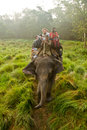 Elephant and riders chitwan national park chitwan nepal of Royalty Free Stock Photography