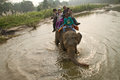 Elephant and riders chitwan national park chitwan nepal of Stock Images