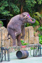 Elephant stands on the balance beam Royalty Free Stock Images